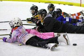 Scotiabank Skates